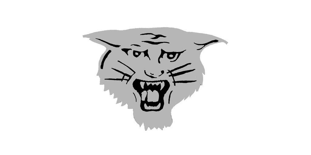 Holstein Wildcats Mascot